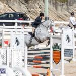 RES Hunter Jumper Show Series 1 Bermuda, January 20 2019-3674
