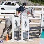 RES Hunter Jumper Show Series 1 Bermuda, January 20 2019-3677