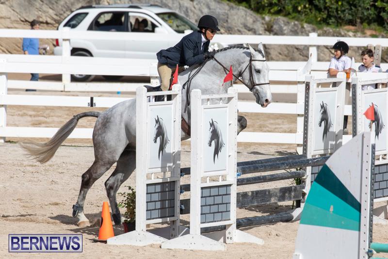 RES-Hunter-Jumper-Show-Series-1-Bermuda-January-20-2019-3677