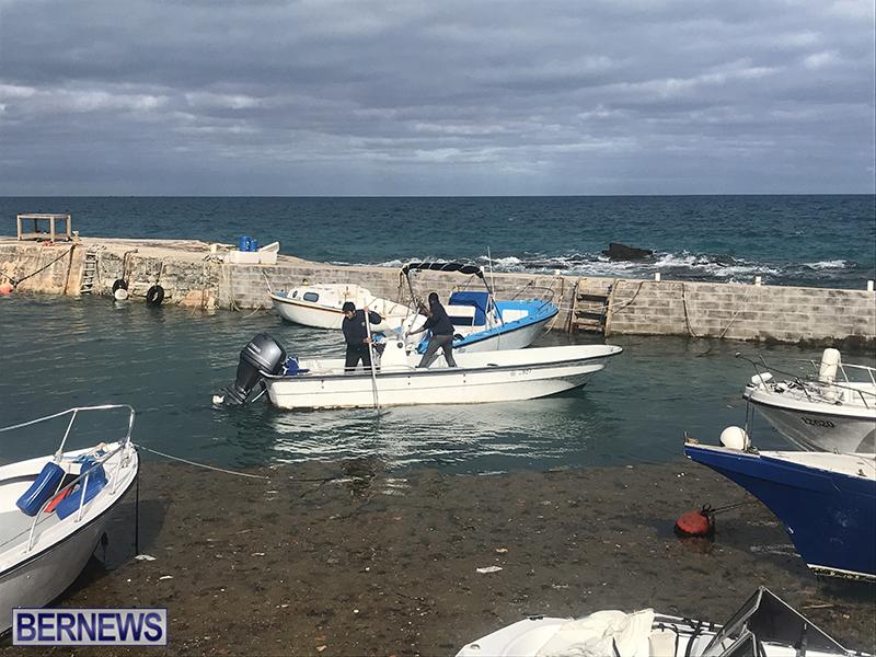 Whale Devonshire Dock Bermuda, January 23 2019 (14)