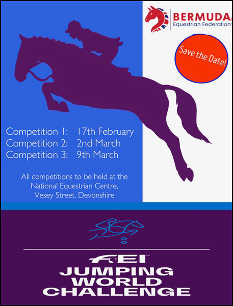 2019 FEI JUMPING World Challenge poster