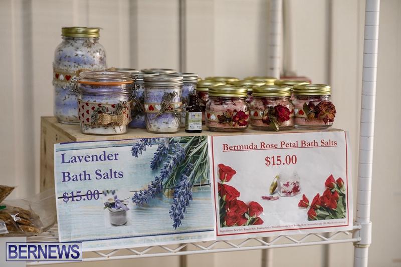 BNT Plant & Bake Sale 0216 (11)