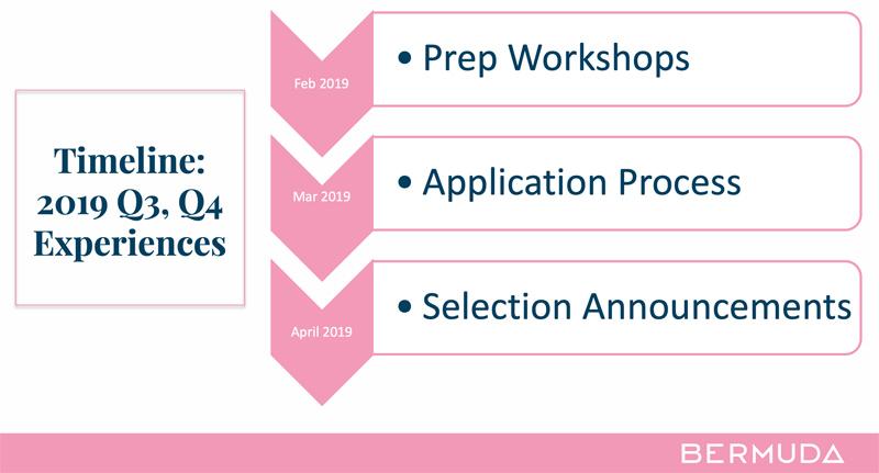 BTA Process Timeline Bermuda February 2019