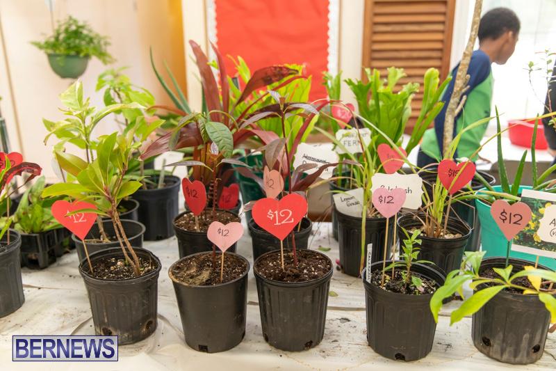 Church Girls and Boys Brigades Valentines Fair Bermuda, February 9 2019 (16)