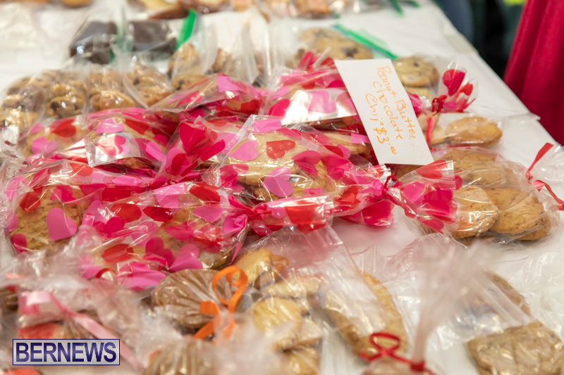 Church Girls and Boys Brigades Valentines Fair Bermuda, February 9 2019 (5)
