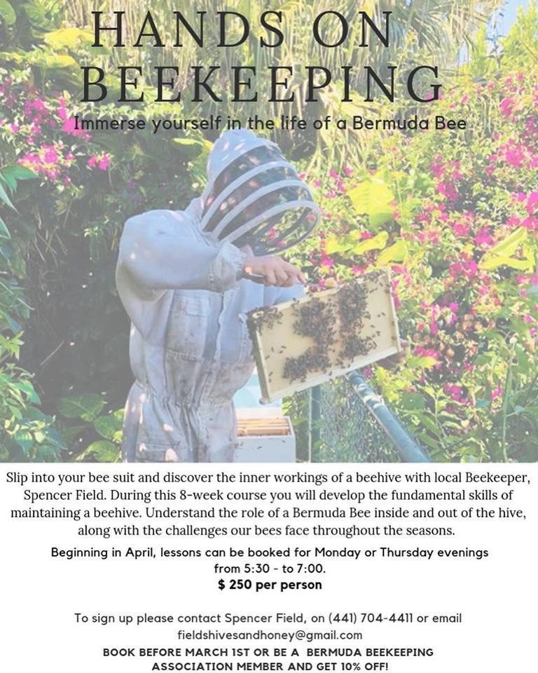 Hand on Beekeeping Bermuda April 2019