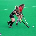 Hockey Bermuda Feb 6 2019 (3)