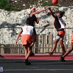 Netball Bermuda Feb 6 2019 (5)