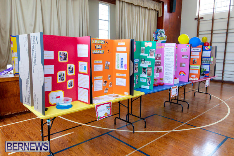 Purvis-Primary-Science-Fair-Bermuda-February-21-2019-9261