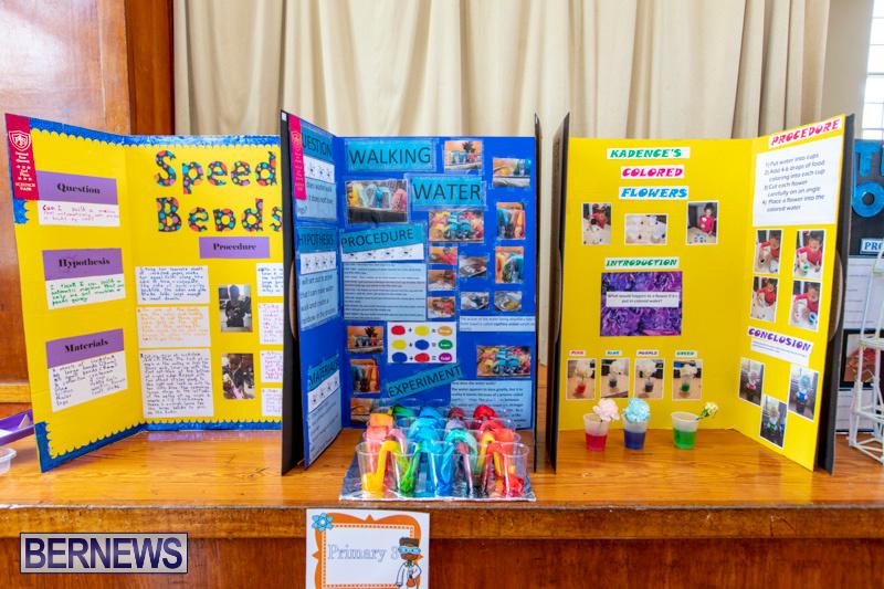 Purvis-Primary-Science-Fair-Bermuda-February-21-2019-9264