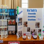 Purvis Primary Science Fair Bermuda, February 21 2019-9265