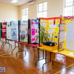 Purvis Primary Science Fair Bermuda, February 21 2019-9269