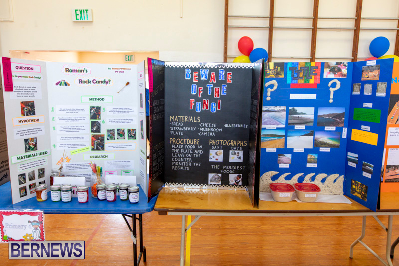 Purvis-Primary-Science-Fair-Bermuda-February-21-2019-9270