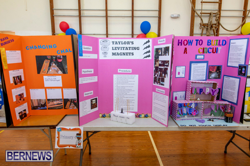 Purvis-Primary-Science-Fair-Bermuda-February-21-2019-9271