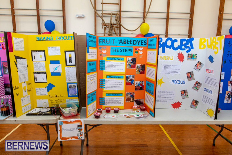 Purvis-Primary-Science-Fair-Bermuda-February-21-2019-9272
