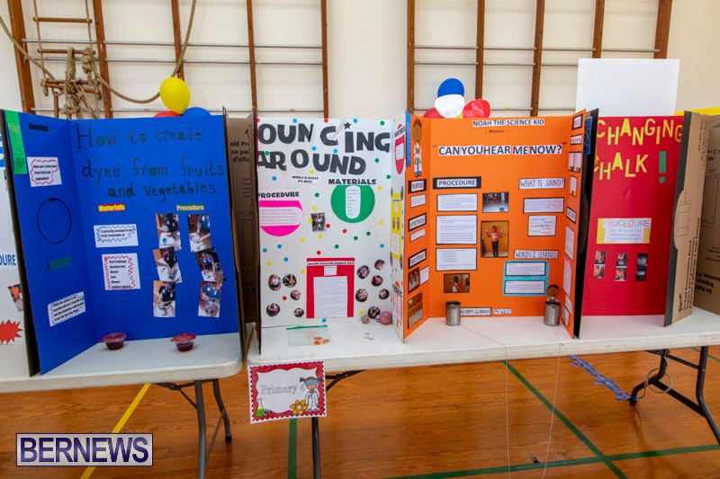 Purvis-Primary-Science-Fair-Bermuda-February-21-2019-9273