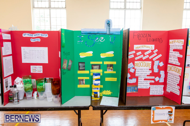 Purvis-Primary-Science-Fair-Bermuda-February-21-2019-9275