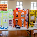 Purvis Primary Science Fair Bermuda, February 21 2019-9278