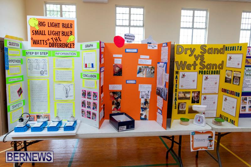Purvis-Primary-Science-Fair-Bermuda-February-21-2019-9278