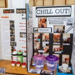 Purvis Primary Science Fair Bermuda, February 21 2019-9281