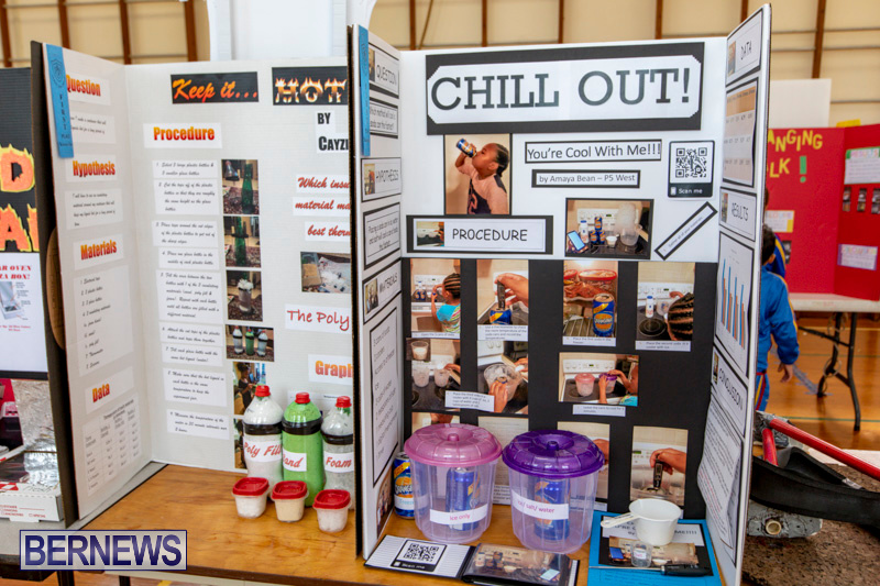 Purvis-Primary-Science-Fair-Bermuda-February-21-2019-9281