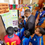 Purvis Primary Science Fair Bermuda, February 21 2019-9286