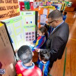 Purvis Primary Science Fair Bermuda, February 21 2019-9289