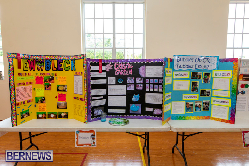 Purvis-Primary-Science-Fair-Bermuda-February-21-2019-9290