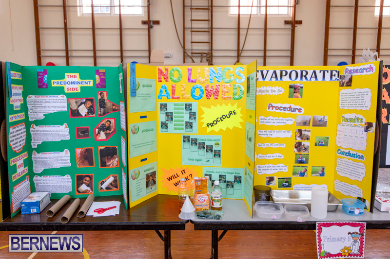 Purvis-Primary-Science-Fair-Bermuda-February-21-2019-9292