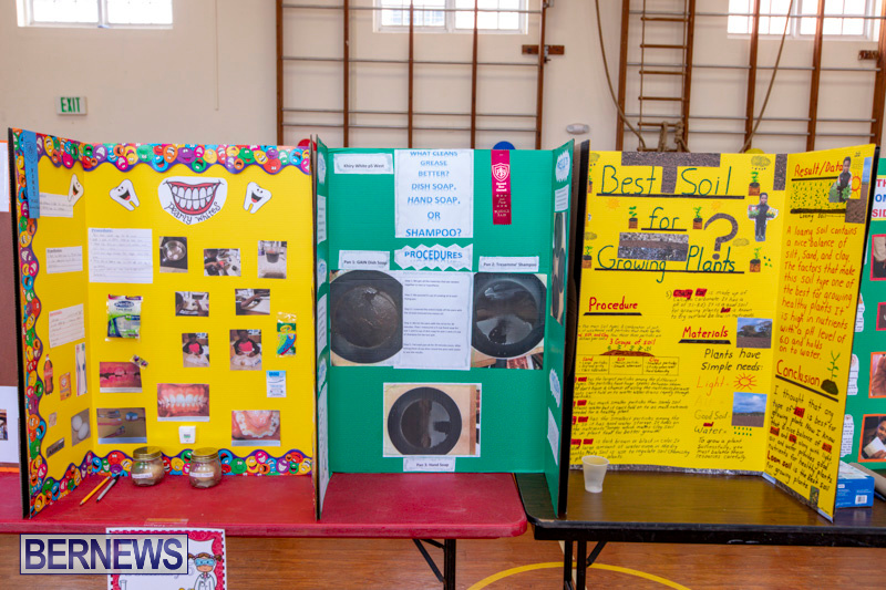 Purvis-Primary-Science-Fair-Bermuda-February-21-2019-9293