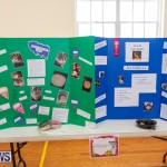 Purvis Primary Science Fair Bermuda, February 21 2019-9295