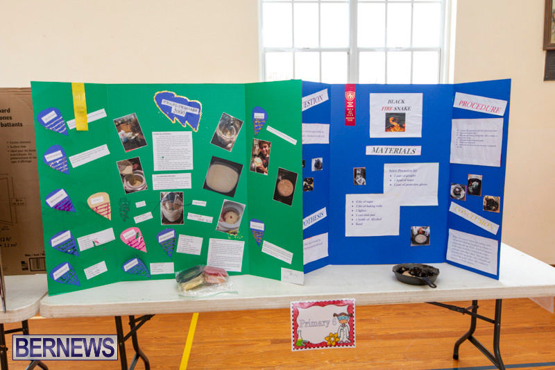 Purvis-Primary-Science-Fair-Bermuda-February-21-2019-9295