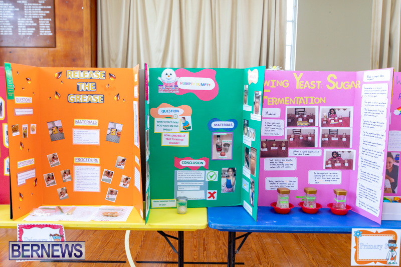 Purvis-Primary-Science-Fair-Bermuda-February-21-2019-9297