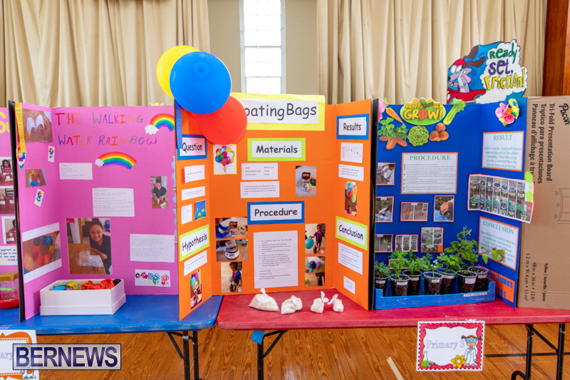 Purvis-Primary-Science-Fair-Bermuda-February-21-2019-9298