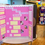 Purvis Primary Science Fair Bermuda, February 21 2019-9302