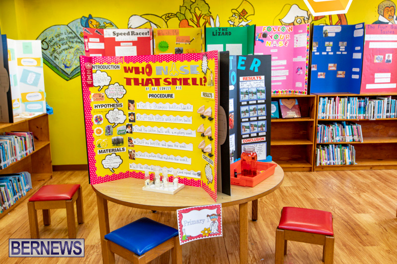 Purvis-Primary-Science-Fair-Bermuda-February-21-2019-9304