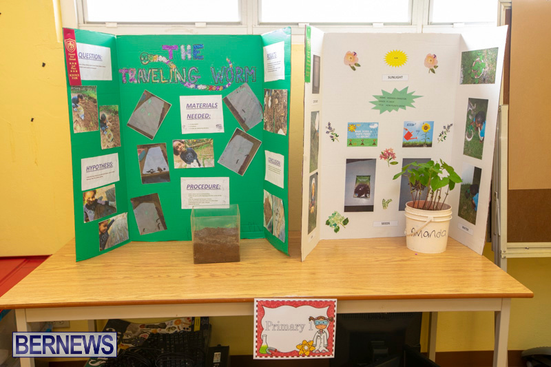 Purvis-Primary-Science-Fair-Bermuda-February-21-2019-9306