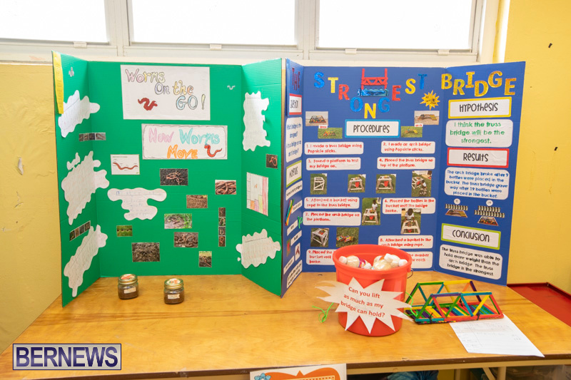 Purvis-Primary-Science-Fair-Bermuda-February-21-2019-9307