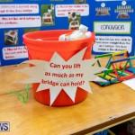 Purvis Primary Science Fair Bermuda, February 21 2019-9308