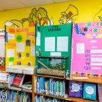 Purvis Primary Science Fair Bermuda, February 21 2019-9311
