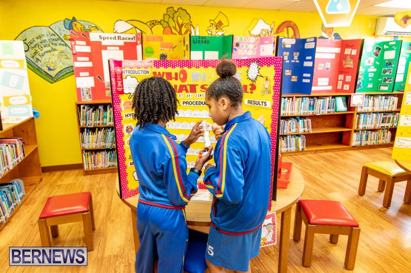 Purvis-Primary-Science-Fair-Bermuda-February-21-2019-9313
