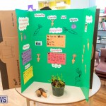 Purvis Primary Science Fair Bermuda, February 21 2019-9316