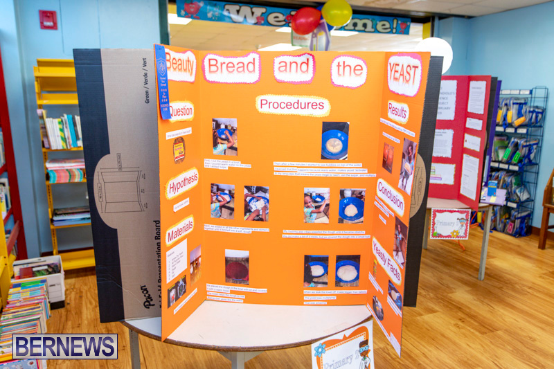 Purvis-Primary-Science-Fair-Bermuda-February-21-2019-9317