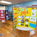 Purvis Primary Science Fair Bermuda, February 21 2019-9318