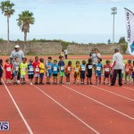 Skyport Magic Mile Bermuda, February 23 2019-9331