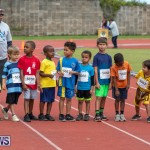 Skyport Magic Mile Bermuda, February 23 2019-9335