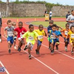 Skyport Magic Mile Bermuda, February 23 2019-9372