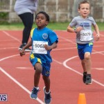 Skyport Magic Mile Bermuda, February 23 2019-9382