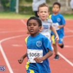 Skyport Magic Mile Bermuda, February 23 2019-9386