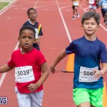Skyport Magic Mile Bermuda, February 23 2019-9394
